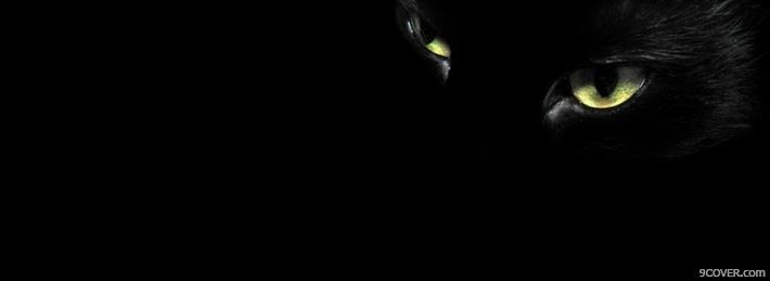 Ảnh nền đen mắt mèo