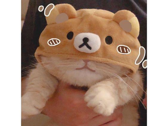 avatar đẹp cute cho con gái