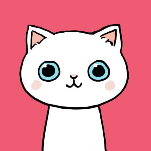 ảnh avatar mèo cute