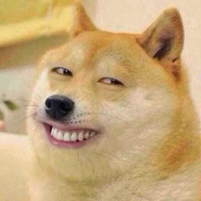 Ảnh chó cười đểu