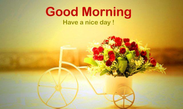 Good morning thứ hai