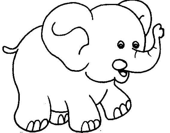 Hình chú voi to lớn