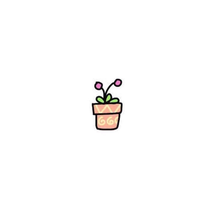 Hình chậu hoa nhỏ