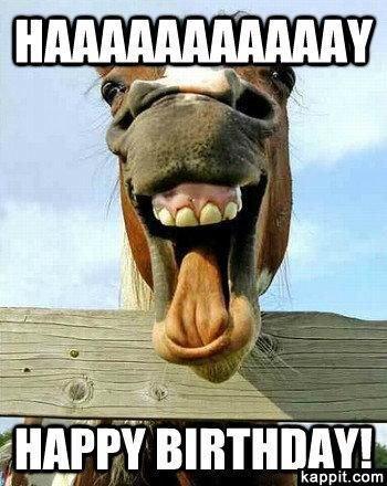 Những hình ảnh chúc mừng sinh nhật hài hước