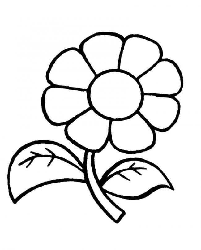 Bé tô màu bông hoa