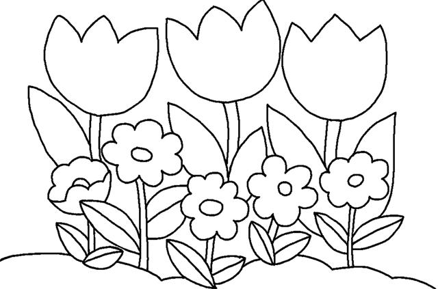 Hình bông hoa cho bé tô màu