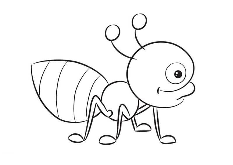 Hình con vật con kiến