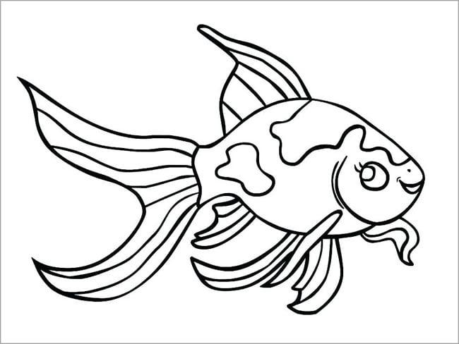 Hình tô màu con cá chép cho bé