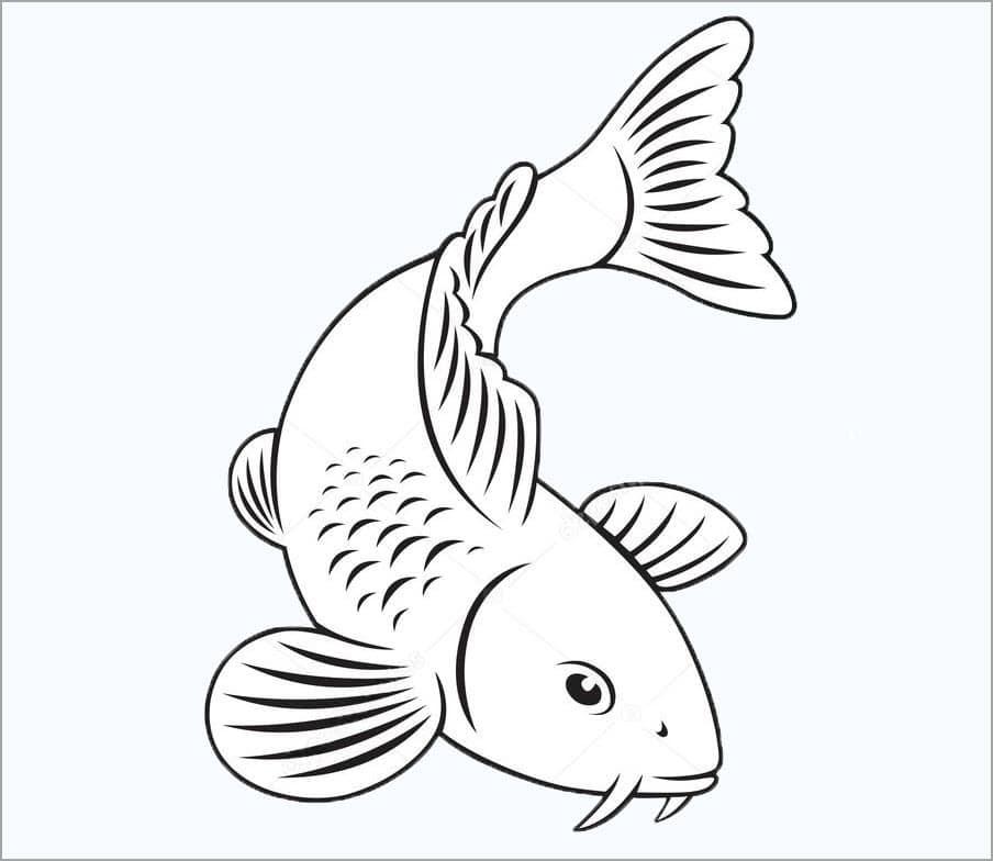 Hình tô màu con cá chép đẹp