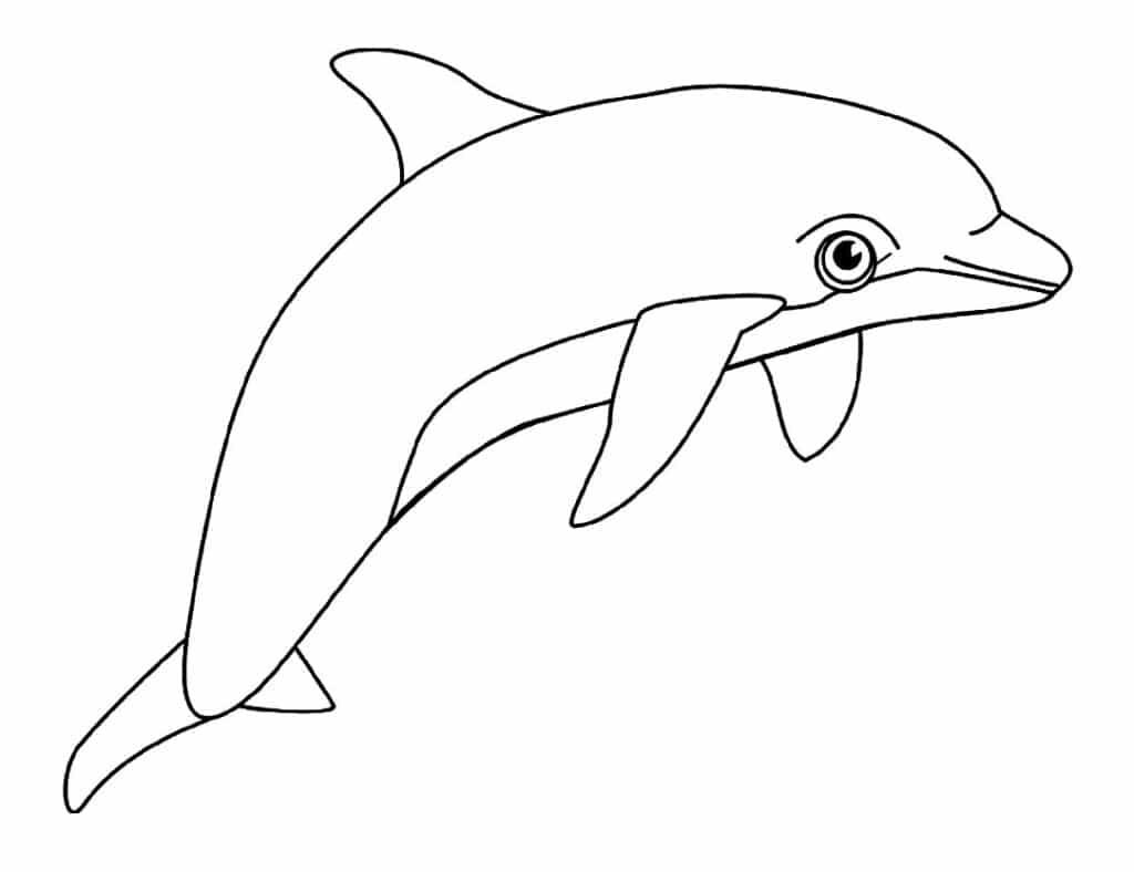 Tổng hợp các bức hình tô màu cá heo cho bé