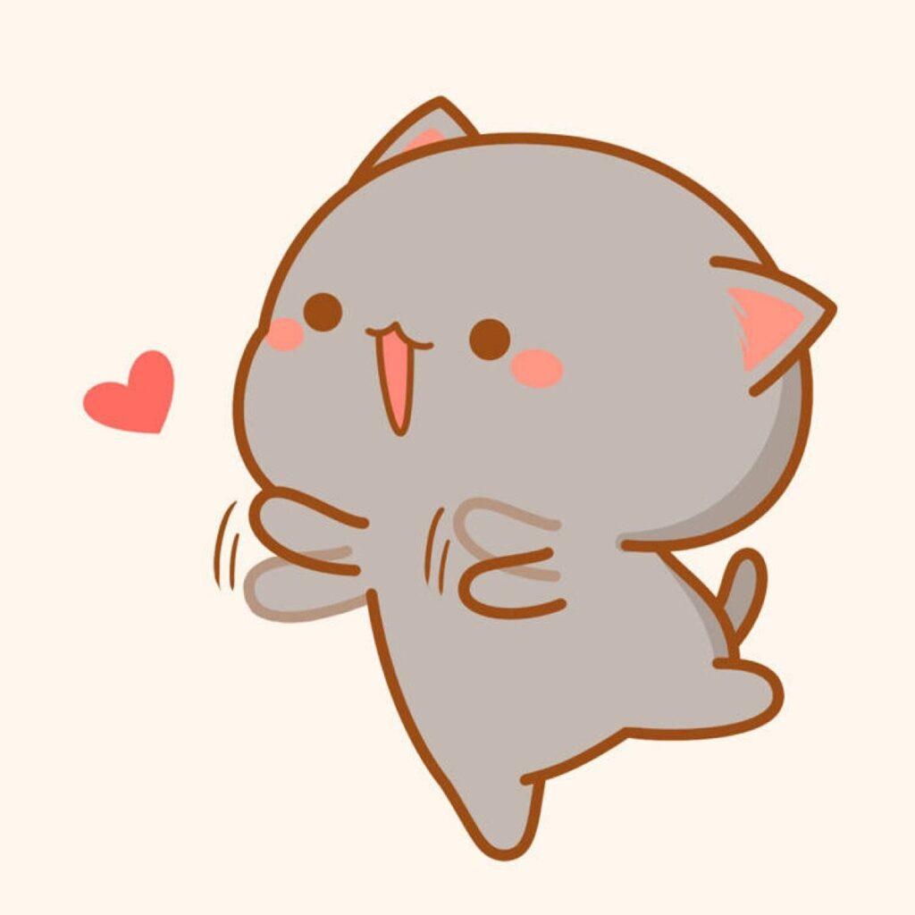 Avt mèo cute dễ thương