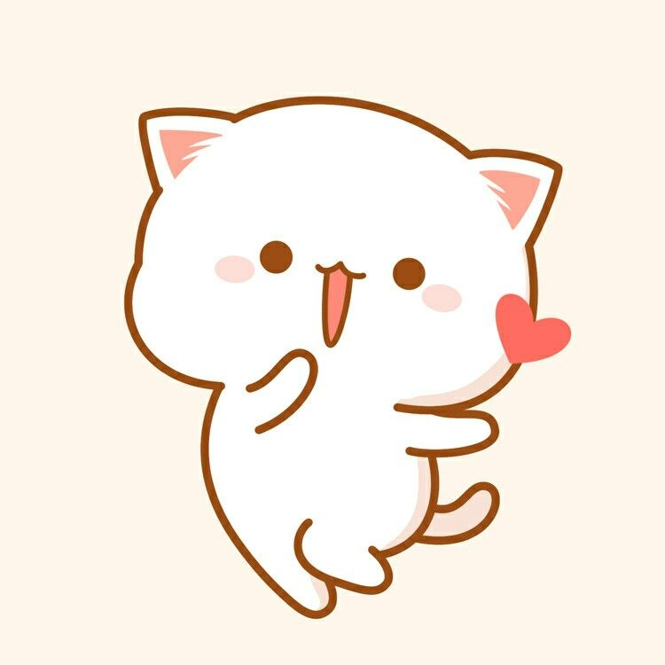 Avt mèo cute đáng yêu dễ thương