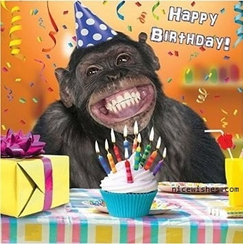 Ảnh chúc sinh nhật hài hước và bá đạo