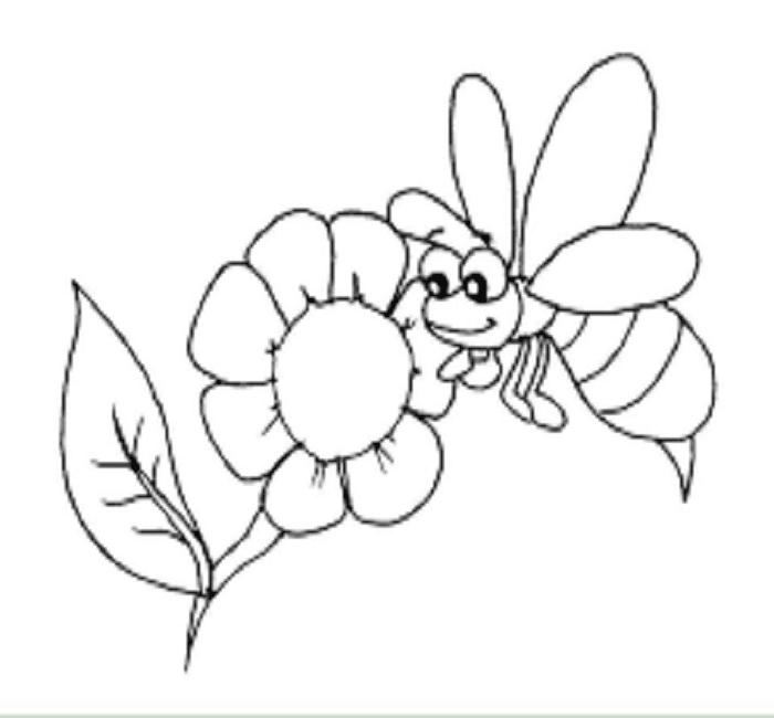 Hình ảnh con ong cho bé tô màu
