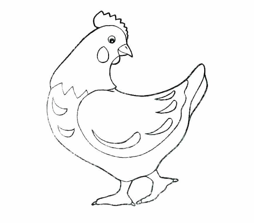 Hình con gà mái đẹp