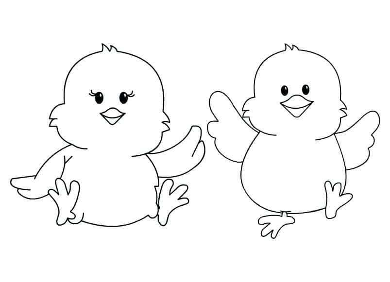 Hình ảnh 2 chú gà con dễ thương