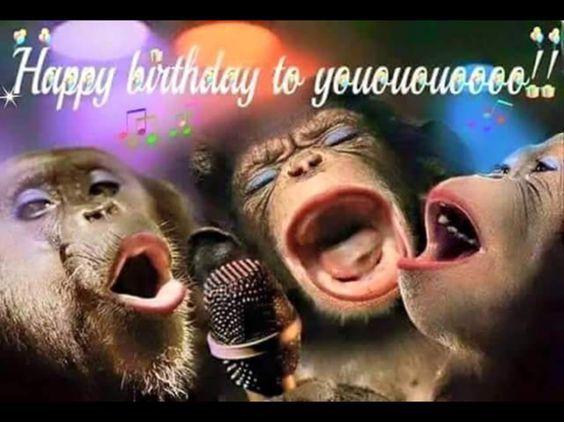 Không thể nhịn cười trước bức ảnh troll nhau ngày sinh nhật