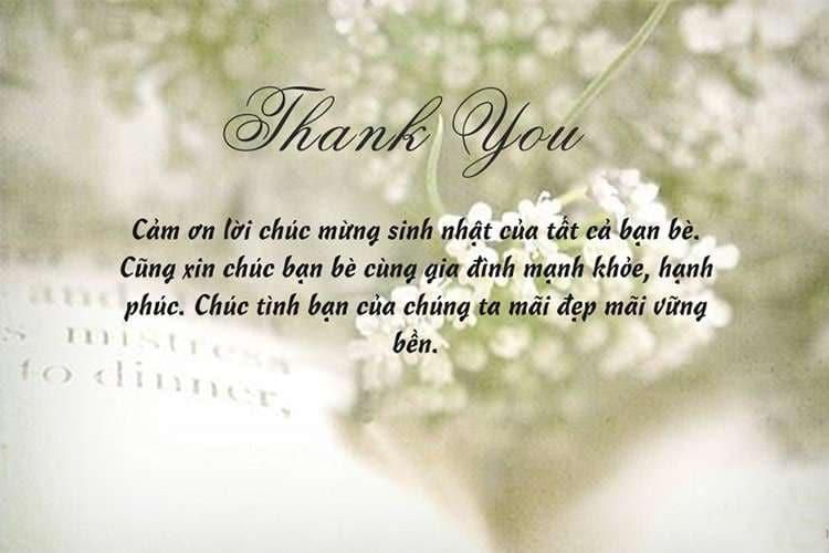 Lời cảm ơn chân thành tới những người đã tới sinh nhật bạn