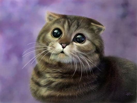 Nhìn con mèo mà muốn bắt về nuôi