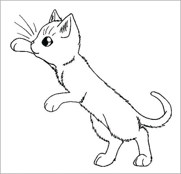 Tranh tô màu chú mèo xinh xắn cho bé tập tô màu