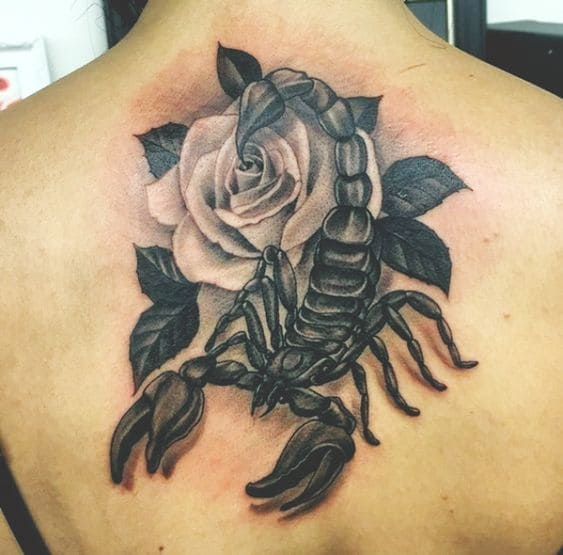 mẫu tattoo 3d bọ cạp hoa hồng ở lưng