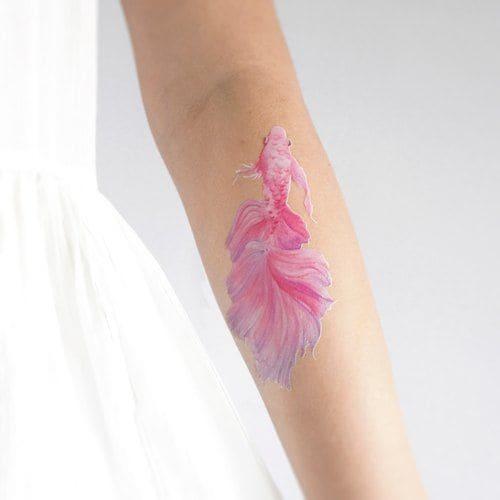 mẫu tattoo cá chép màu hồng cho nữ