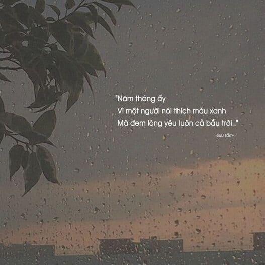 hình ảnh stt buồn cô đơn về tình yêu