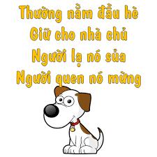 Câu đố về con chó