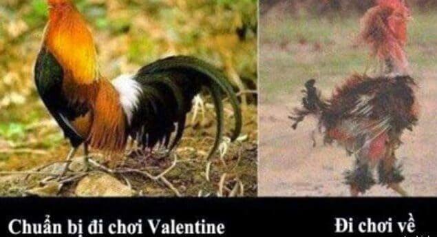 Hình chế valentine
