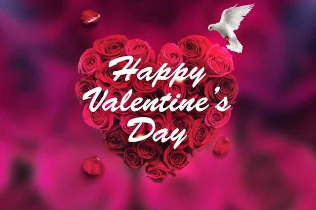 Hình nền trái tim ghép thừ hoa hồng và chim bồ câu đậu lên tượng trưng cho niềm hi vọng trong tình yêu