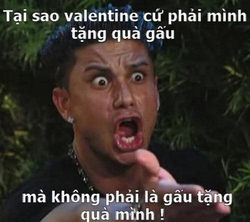vì sao valentine phải tặng quà cho gấu