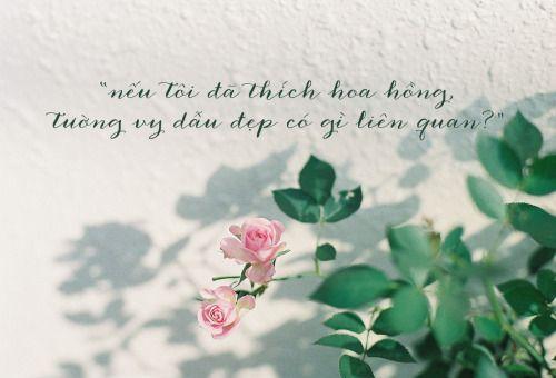Lời thả thính bằng hoa hồng