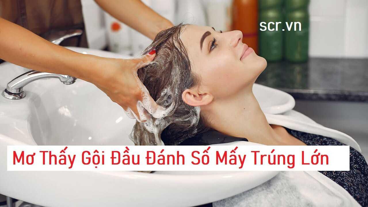 Mo Thay Goi Dau