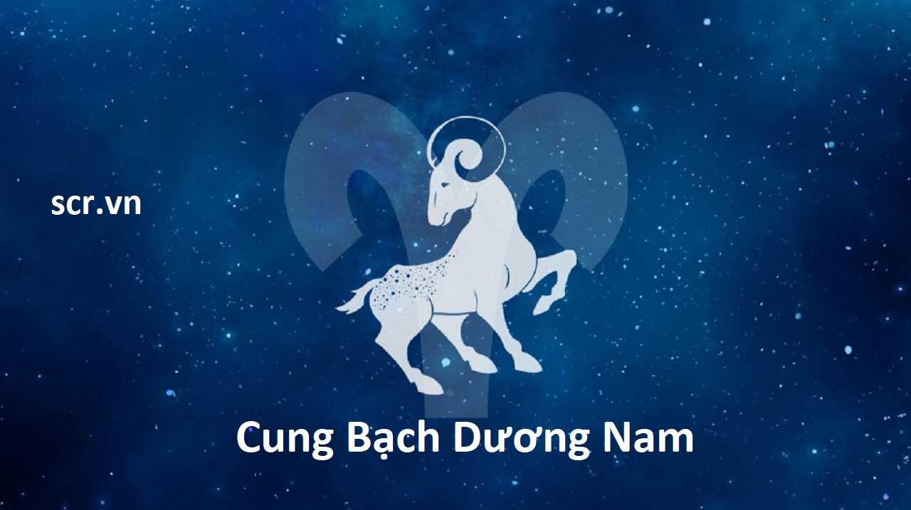 Cung Bạch Dương Nam
