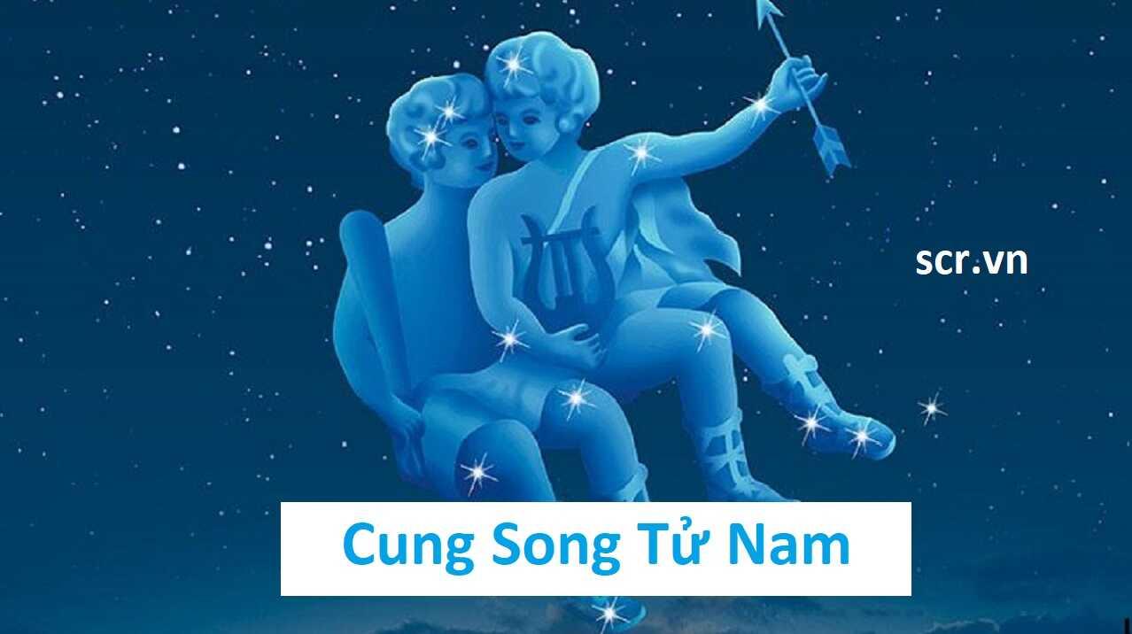 Cung Song Tử Nam