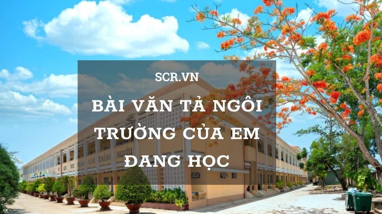 Tả Ngôi Trường