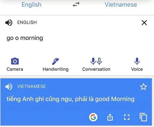 Google dịch nói bậy tiếng Anh